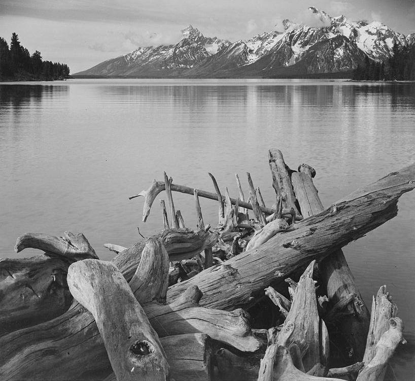 Ansel_Adams-Jackson Lake and Tetons