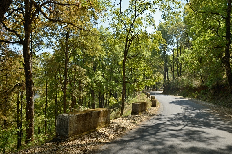 Hill Road in Kumaon