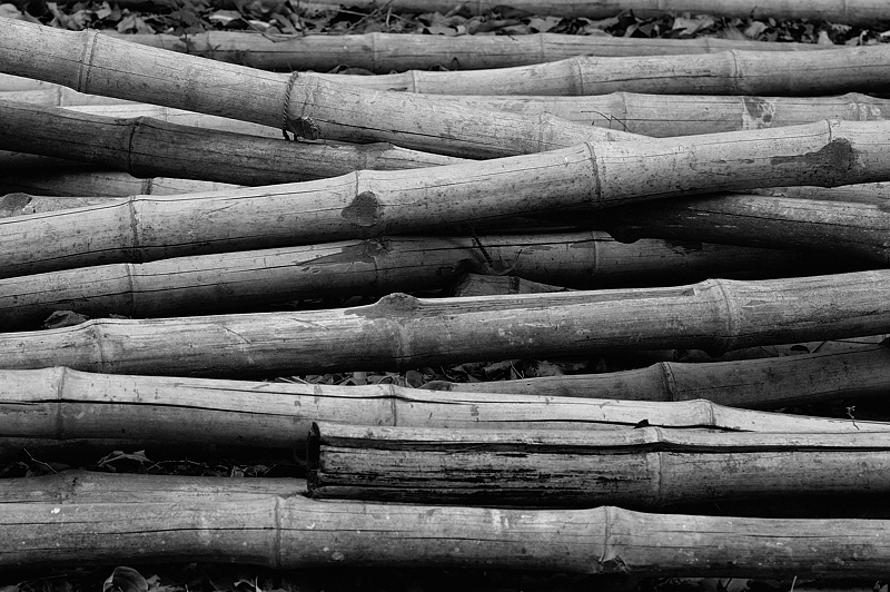 Stack of Bamboo